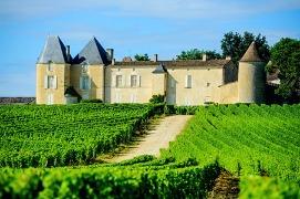 Château Yquem - Sud Gironde