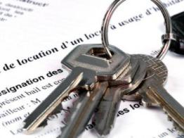 la clause de solidarité dans le bail d'habitation