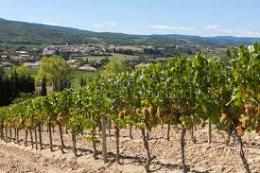 Immobilier d'entreprise dans l'Aude