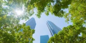 L'immobilier: un enjeu écologique et économique à tous les niveaux