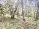 Terrain 0 m² Savignac-de-Miremont Périgord noir  pièces