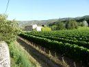 Mas provençal du XVII sur terrain de 12000 m2 et vue panoramique sur village perché du Luberon