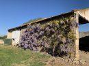 Maison 4 pièces  300 m² Arles