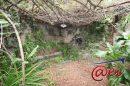 Maison  Six-Fours-les-Plages  150 m² 7 pièces