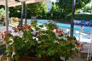 Hotel restaurant  secteur Aubeterre/ Dronne