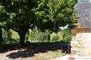 Maison  TERRASSON-LAVILLEDIEU  5 pièces 180 m²