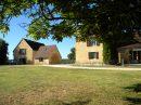 Maison LES EYZIES-DE-TAYAC-SIREUIL  480 m² 13 pièces
