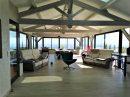 Maison  Fleurie  420 m² 13 pièces