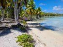Sur un motu de l'Ile de ARATIKA, vend un terrain de 12202m² bord de mer 8475000 xpf