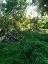 Terrain  Taiarapu-Est Plateau  0 m²  pièces