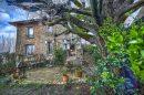 Maison  Sucy-en-Brie le plateau - centre 7 pièces 148 m²