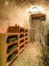 10 pièces Maison  Saint-Maur-des-Fossés ADAMVILLE 220 m²