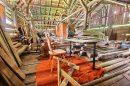 Maison 350 m² Montriond  1 pièces