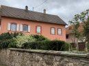Maison 200 m² 11 pièces Truchtersheim