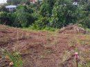 Terrain 0 m² La Trinité Cap Nord  pièces