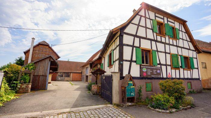 Epfig  47 m²  Appartement 2 pièces