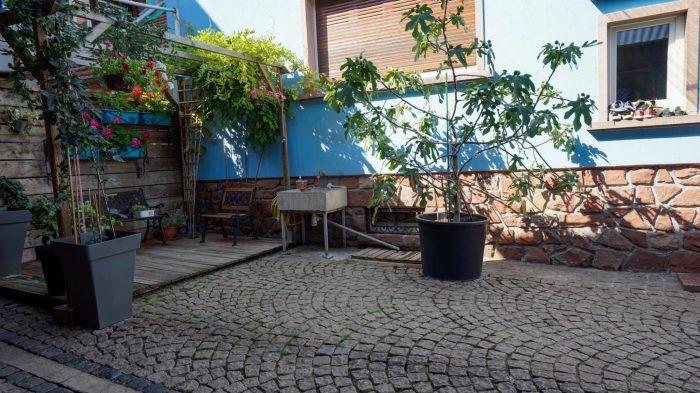 Epfig   175 m² Maison 7 pièces
