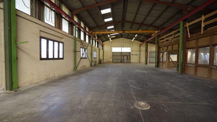 Immobilier Pro 1486 m² 0 pièces  Valff
