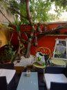 Maison 135 m² Les Lilas  4 pièces