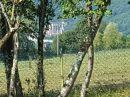 295 m²  Maison Loures-Barousse loures barousse 7 pièces
