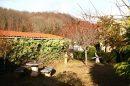 Maison 237 m² 11 pièces Montferrier