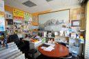 Maison 201 m² Malicorne-sur-Sarthe  7 pièces