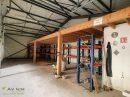 Immobilier Pro 470 m² Darney  0 pièces