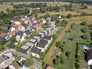 Maison  Drusenheim  4 pièces 101 m²