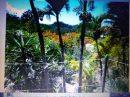 Maison 80 m² las terrenas Las Terrenas Centre 4 pièces