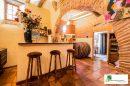 Maison  GAILLAC  432 m² 8 pièces