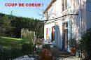 Maison  Mazamet  9 pièces 250 m²