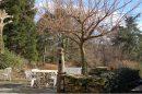 Maison  Mazamet  195 m² 6 pièces