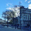 Paris Place de Breteuil  Appartement 143 m² 5 pièces