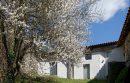 Saint-Symphorien-sur-Coise   335 m² Maison 12 pièces