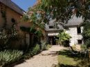 Maison  Montigné-le-Brillant Campagne 250 m² 7 pièces