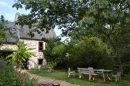 7 pièces Maison Montigné-le-Brillant Campagne 250 m²