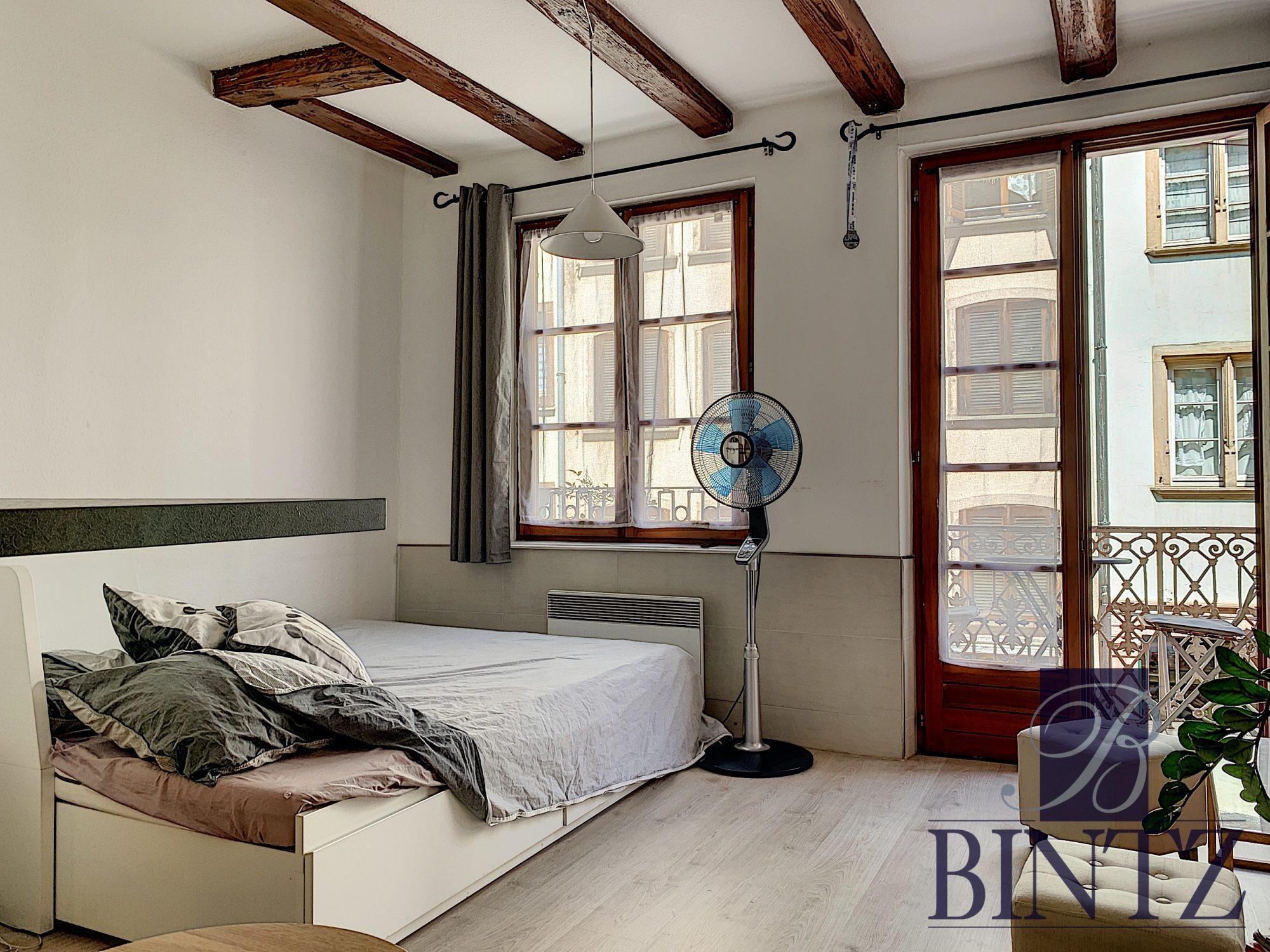 STUDIO MEUBLE HYPER CENTRE - Devenez locataire en toute sérénité - Bintz Immobilier - 9
