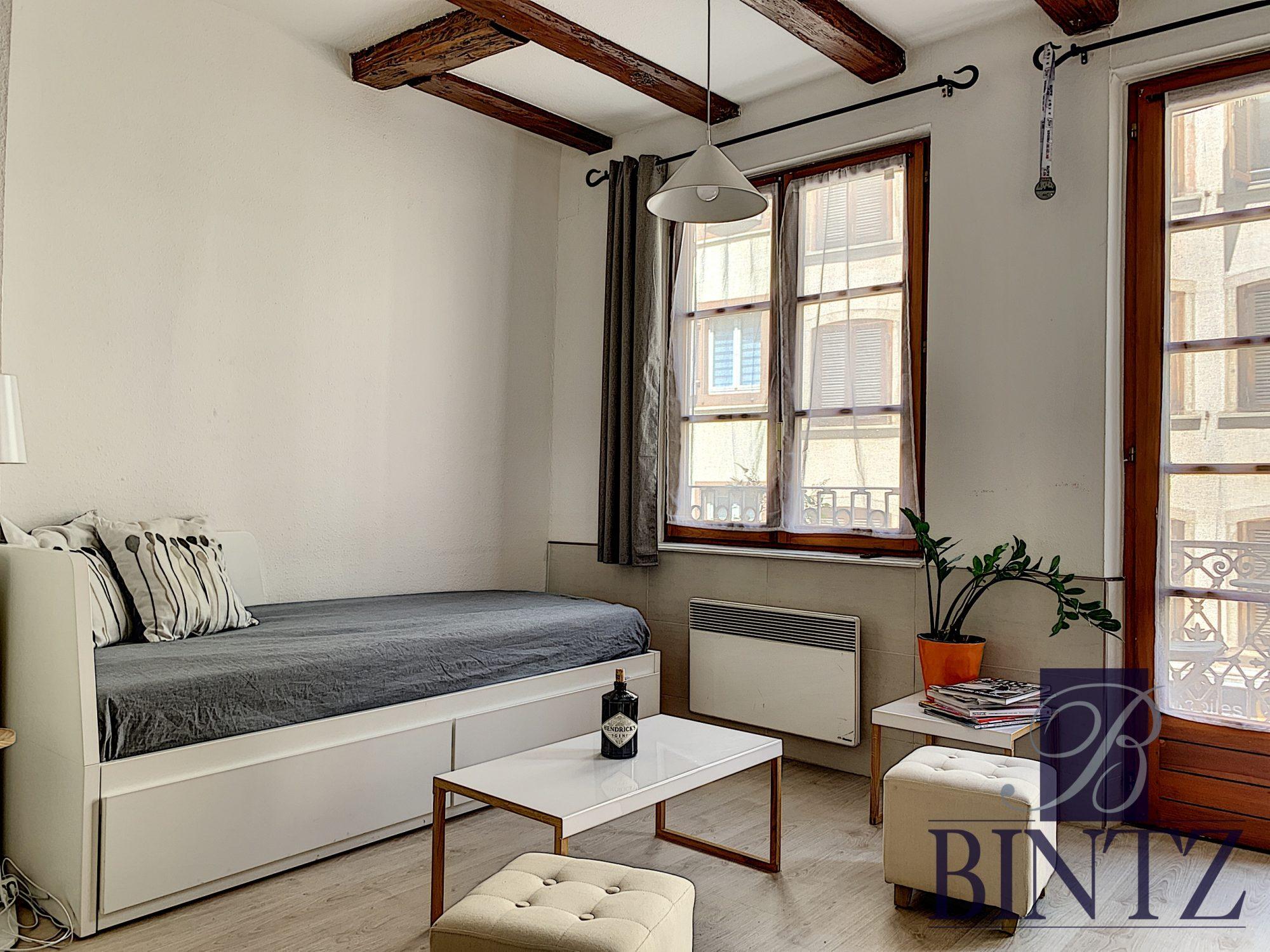 STUDIO MEUBLE HYPER CENTRE - Devenez locataire en toute sérénité - Bintz Immobilier - 4