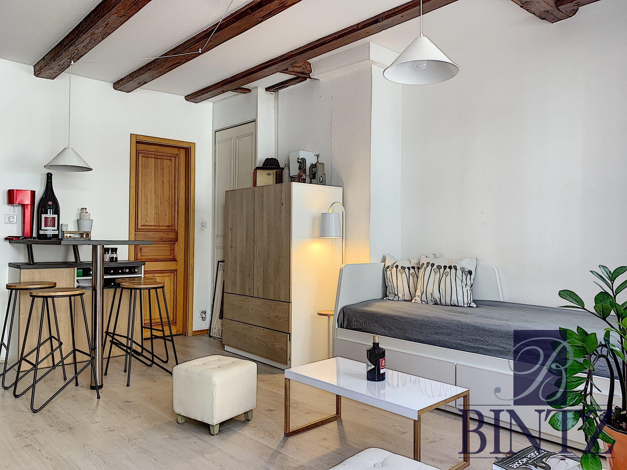 STUDIO MEUBLE HYPER CENTRE - Devenez locataire en toute sérénité - Bintz Immobilier - 1