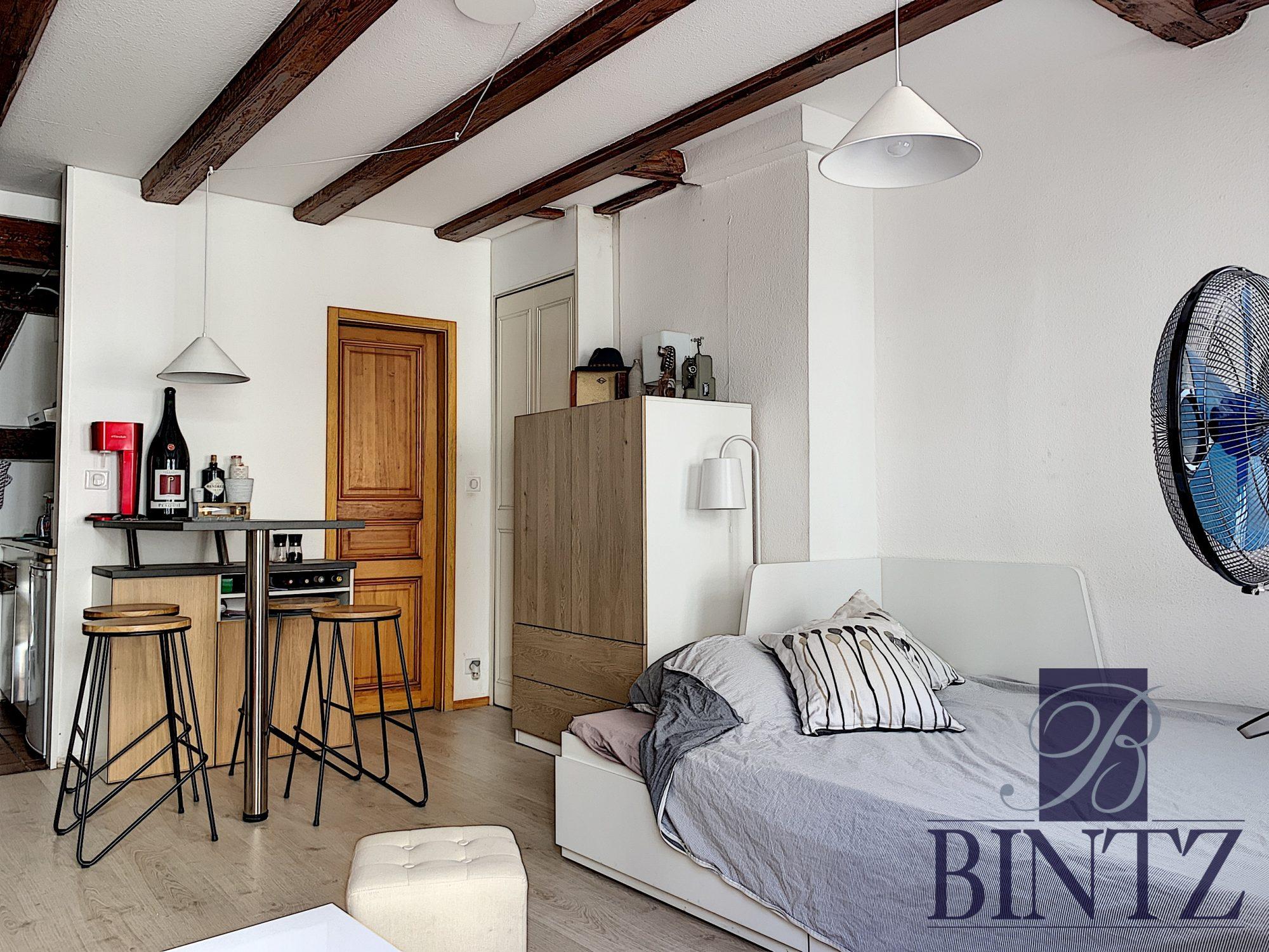STUDIO MEUBLE HYPER CENTRE - Devenez locataire en toute sérénité - Bintz Immobilier - 10