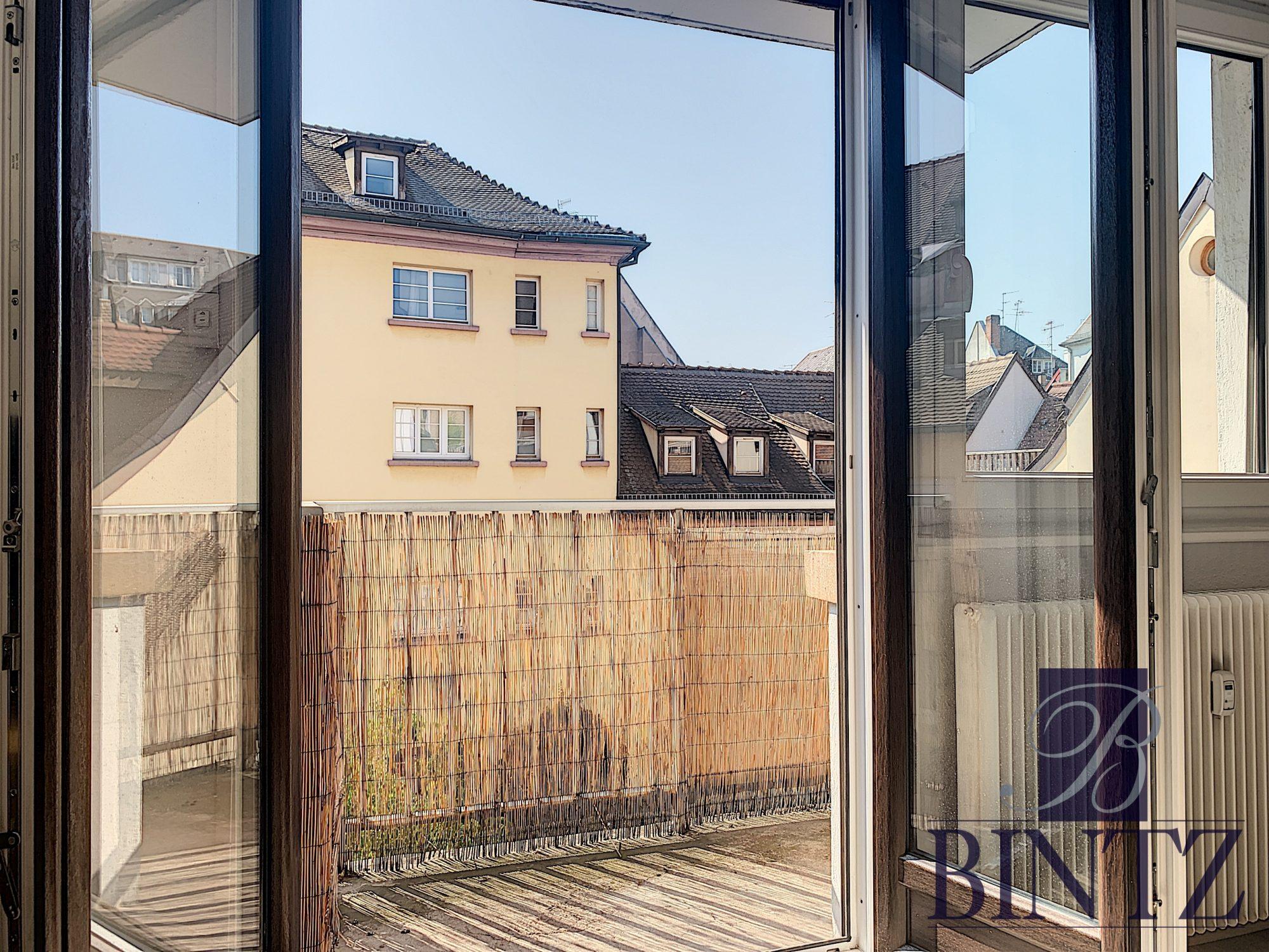 2 PIECES MEUBLE HYPER CENTRE - Devenez locataire en toute sérénité - Bintz Immobilier - 7
