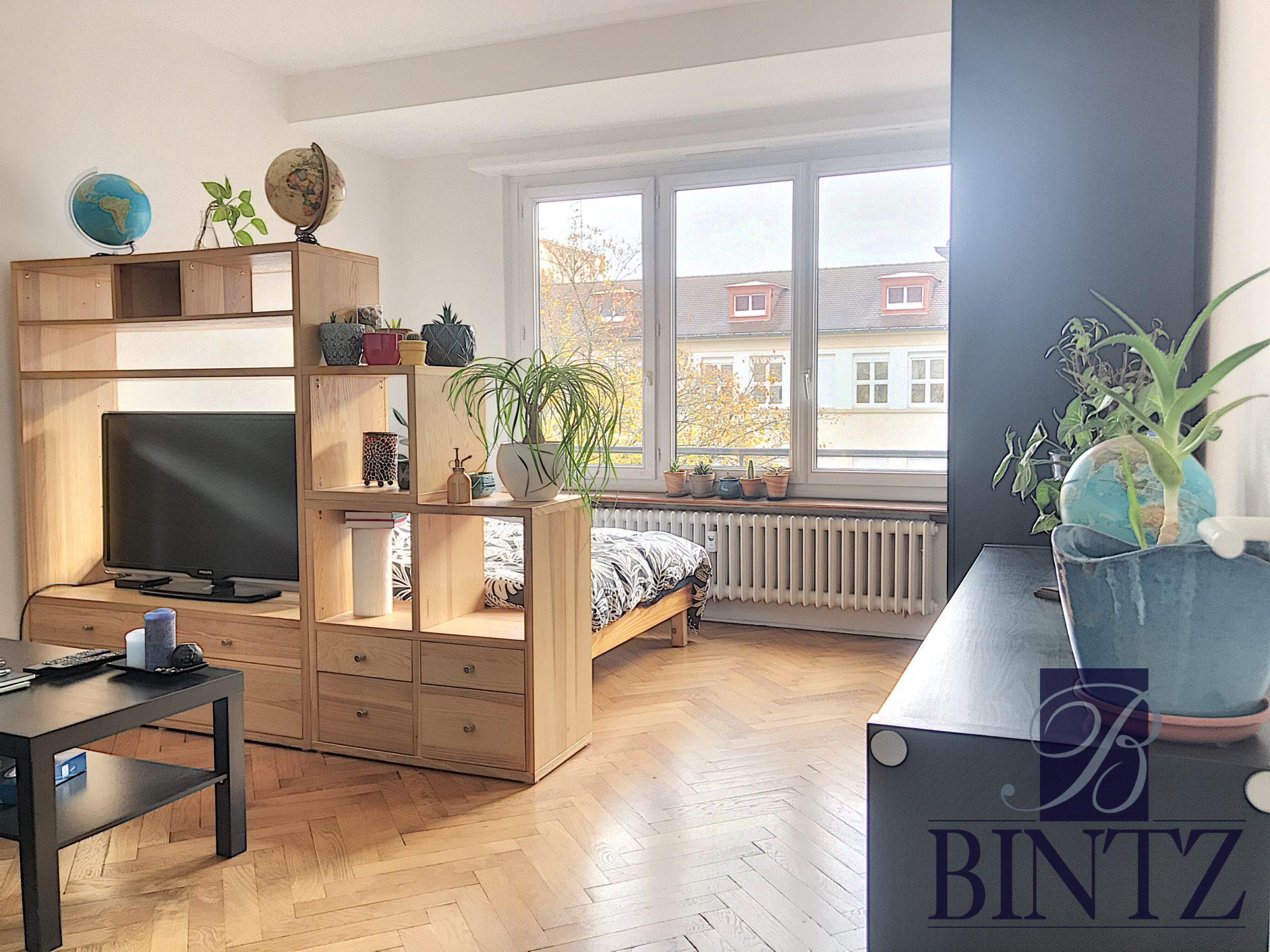1 PIÈCE QUARTIER KRUTENAU - Devenez locataire en toute sérénité - Bintz Immobilier - 1