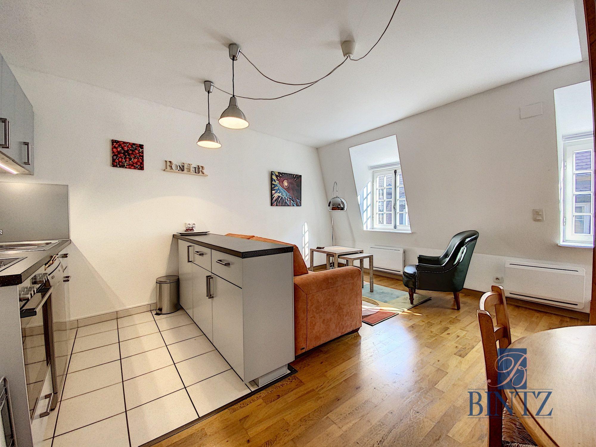 T3 MEUBLÉ HYPER-CENTRE VUE CATHÉDRALE - Devenez locataire en toute sérénité - Bintz Immobilier - 10