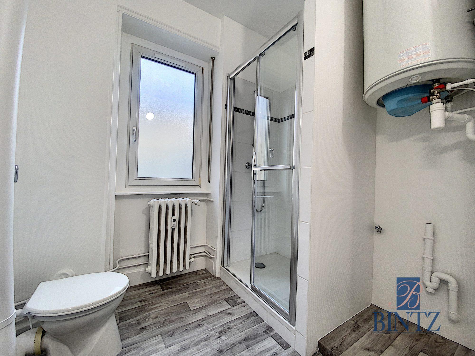 GRAND 1PIÈCE RÉNOVÉ KRUTENAU - Devenez locataire en toute sérénité - Bintz Immobilier - 7