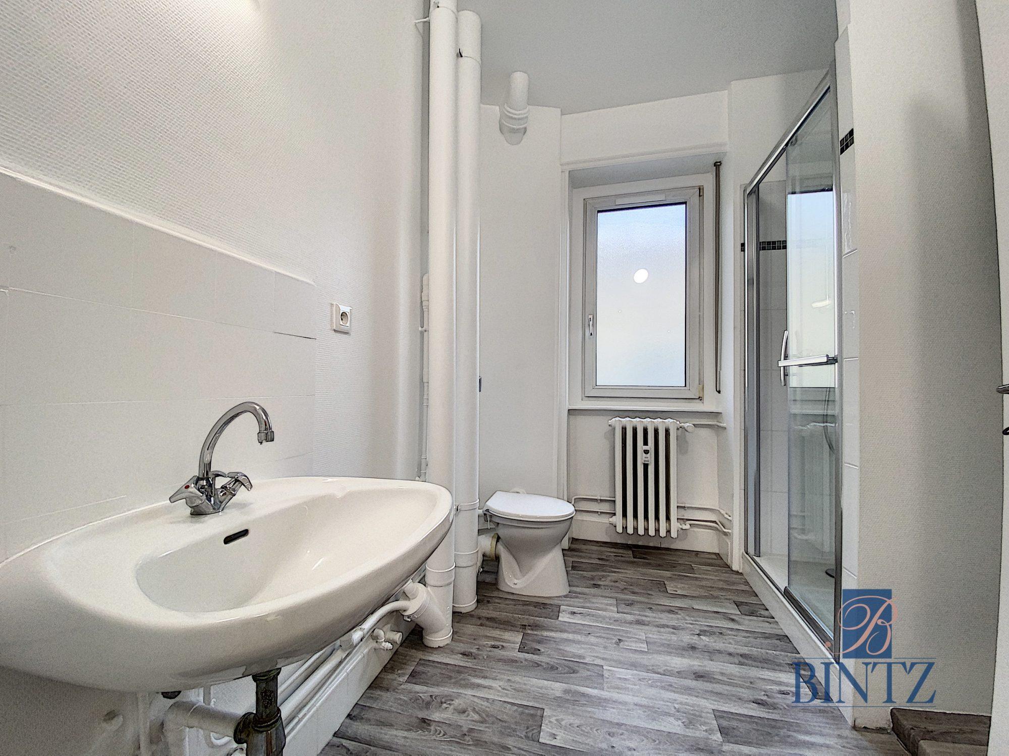 GRAND 1PIÈCE RÉNOVÉ KRUTENAU - Devenez locataire en toute sérénité - Bintz Immobilier - 3