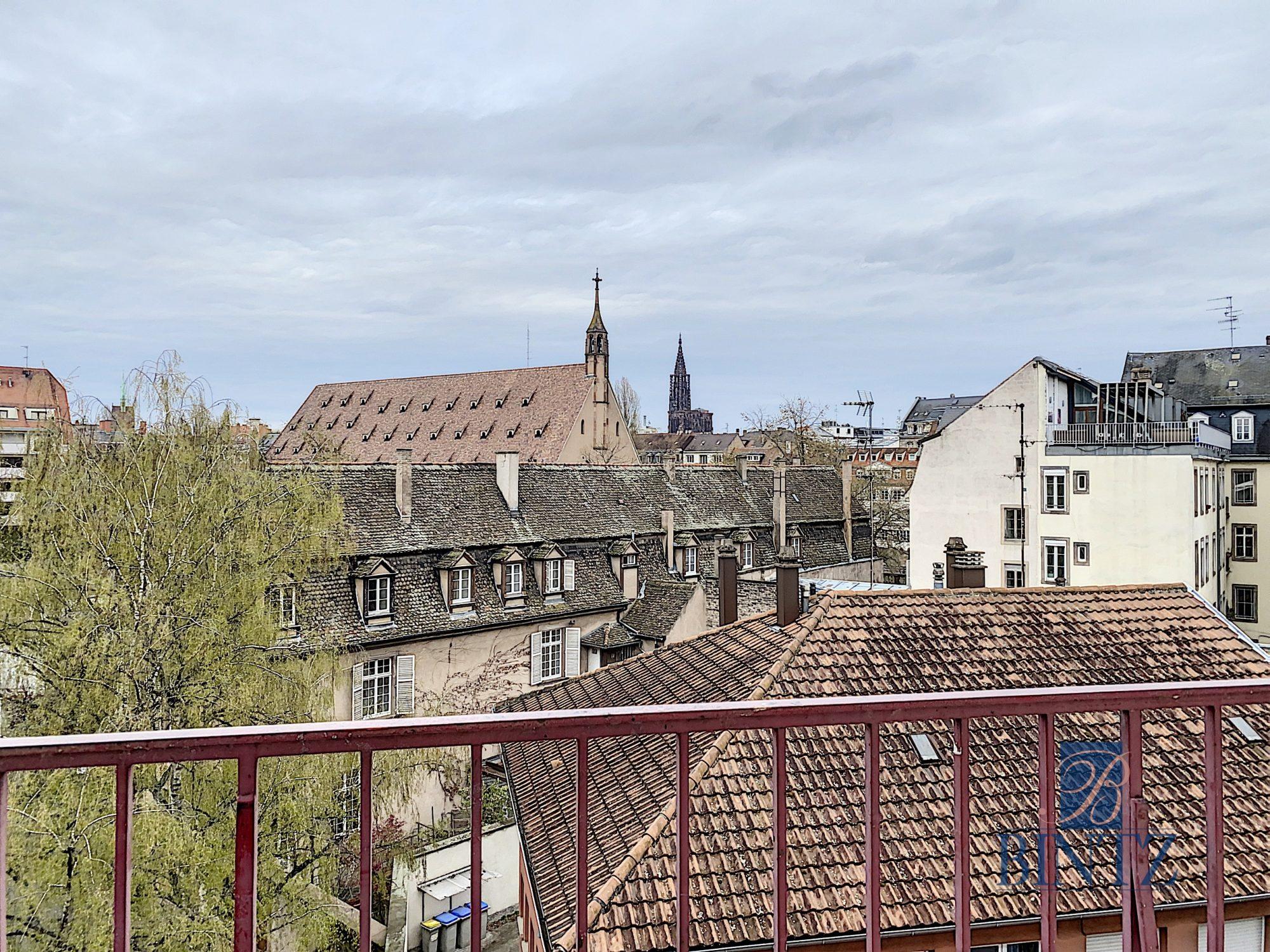 4 pièces refait à neuf quartier Gare - Devenez locataire en toute sérénité - Bintz Immobilier - 6