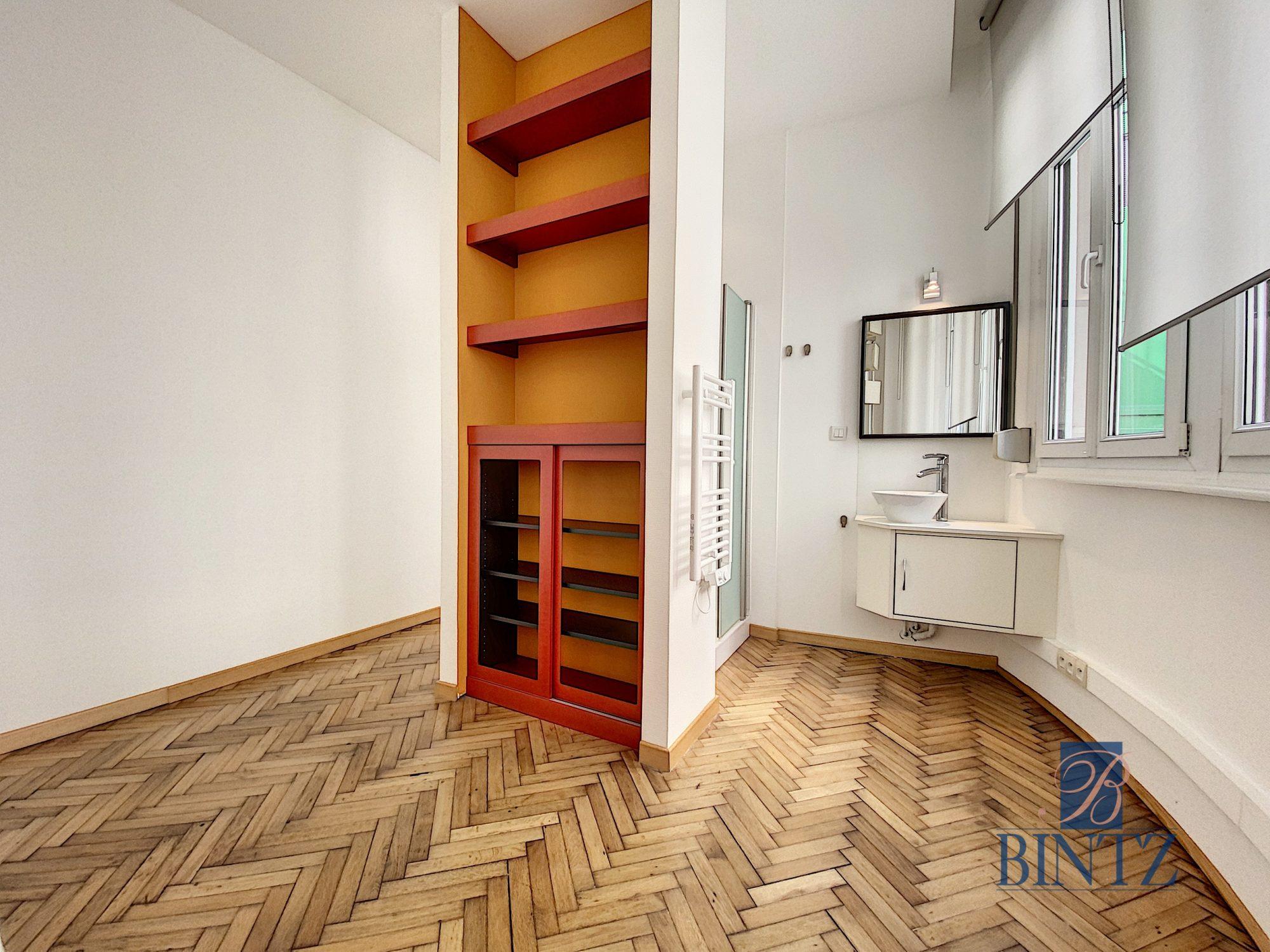 GRAND 1PIÈCE MEUBLÉ NEUSTADT - Devenez locataire en toute sérénité - Bintz Immobilier - 6