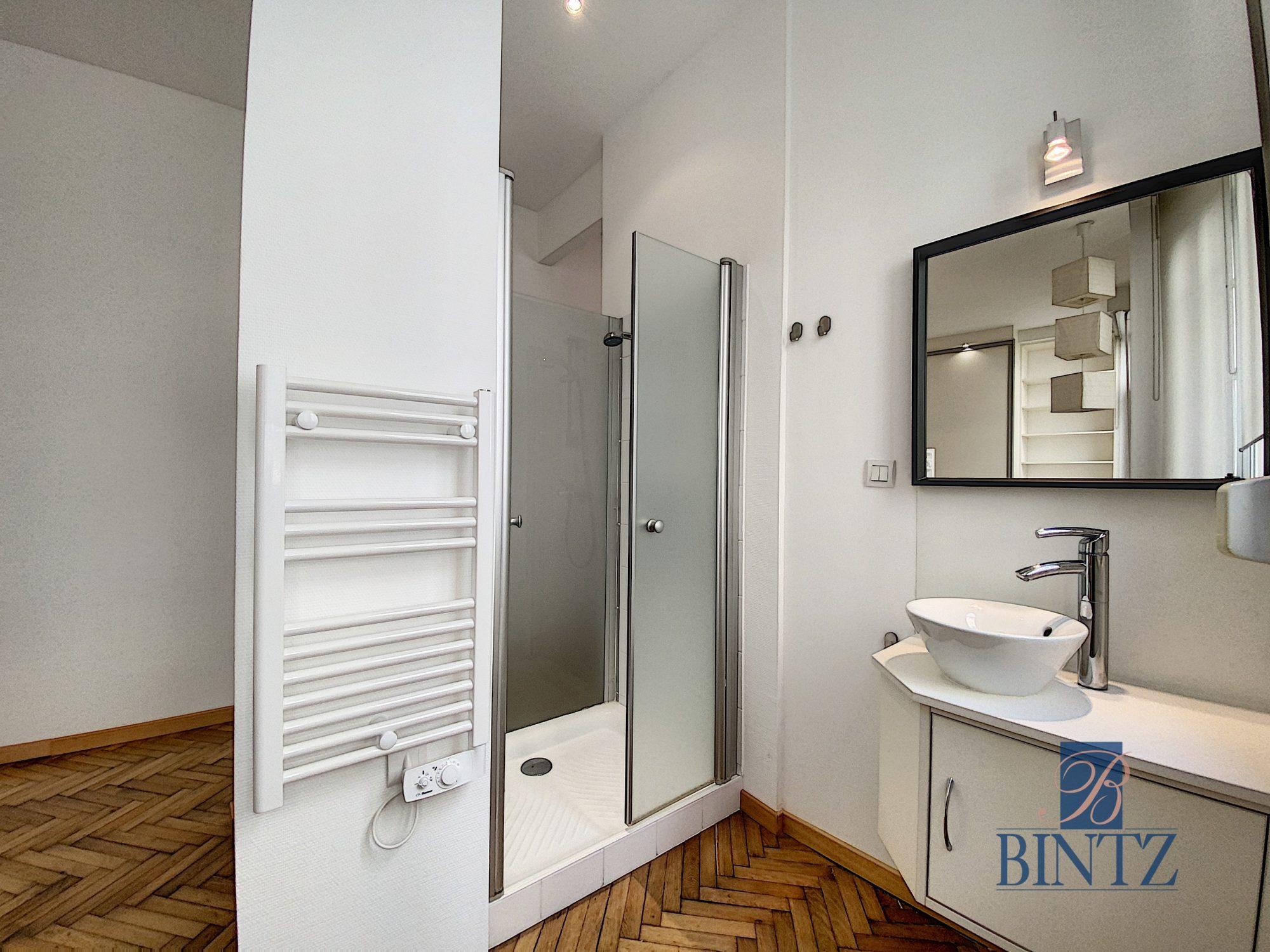 GRAND 1PIÈCE MEUBLÉ NEUSTADT - Devenez locataire en toute sérénité - Bintz Immobilier - 4