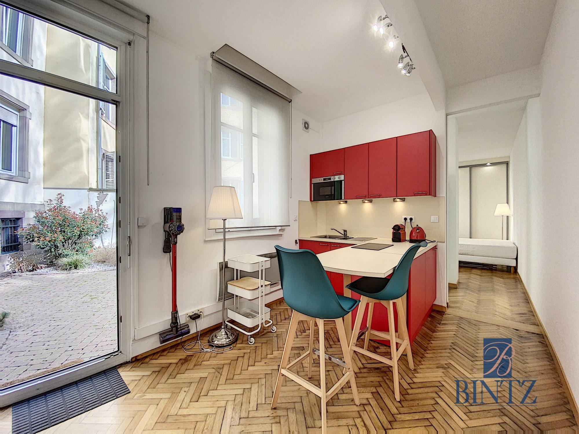 GRAND 1PIÈCE MEUBLÉ NEUSTADT - Devenez locataire en toute sérénité - Bintz Immobilier - 1