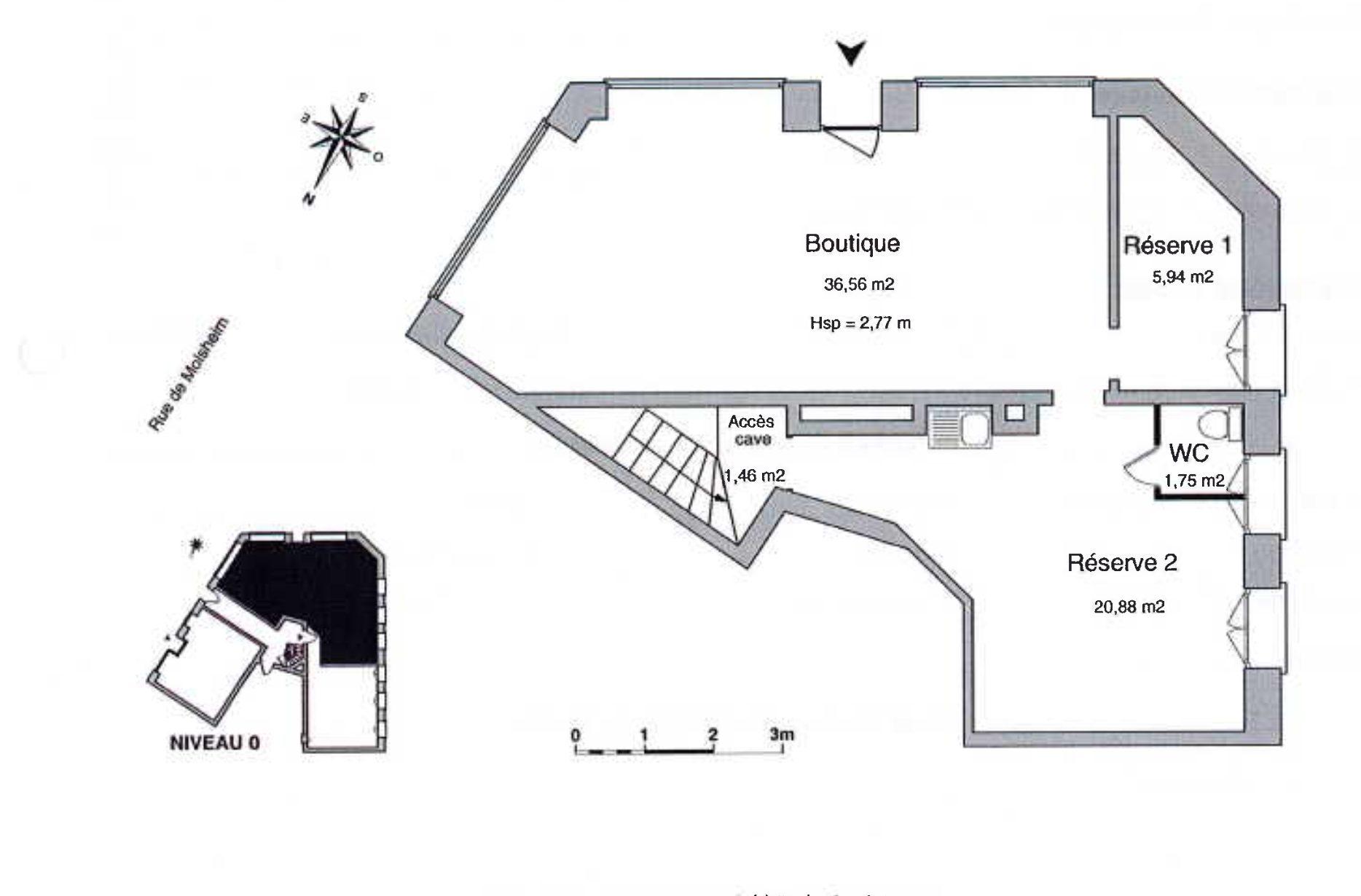 LOCAL COMMERCIAL A LOUER MUSEE D'ART MODERNE - Devenez locataire en toute sérénité - Bintz Immobilier - 2
